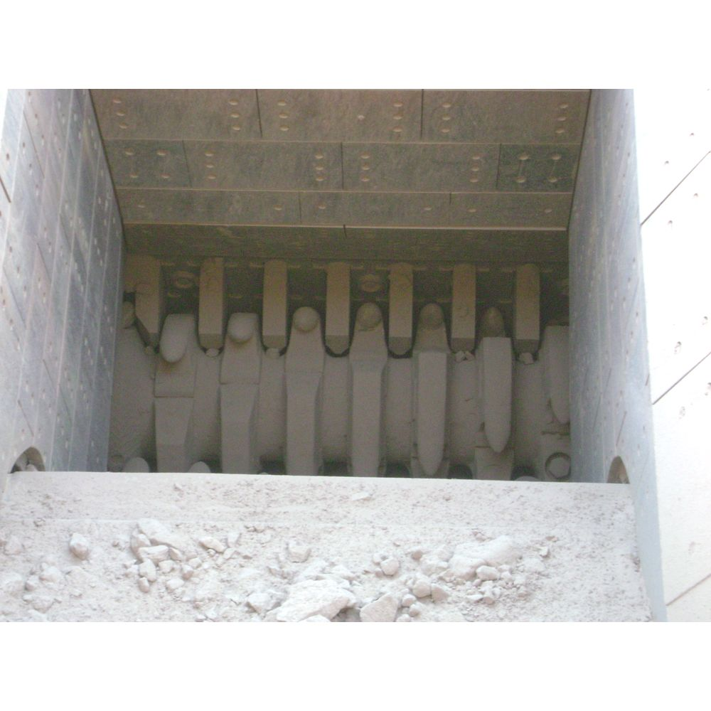 Roll Crusher Sizer  Unicast Wear Parts